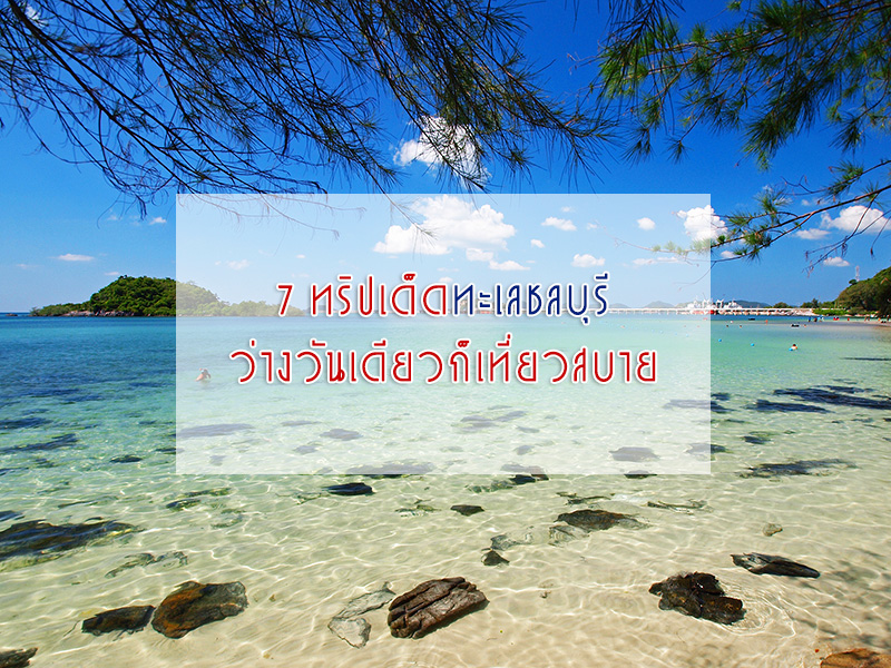 Cover-ชลบุรี1
